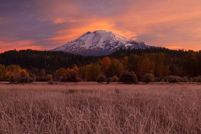 Frumusetea naturii i-a schimbat viata lui Miles Morgan - Poza 10