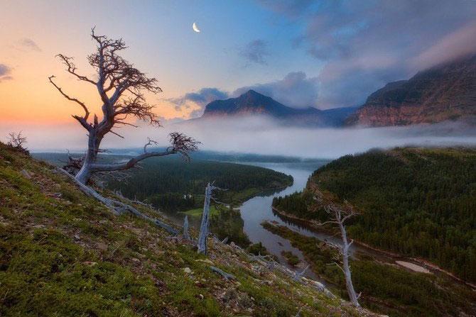 Frumusetea naturii i-a schimbat viata lui Miles Morgan - Poza 13