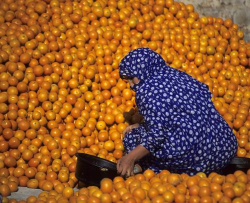 Maroc - unicitatea unui loc de vis - Poza 9