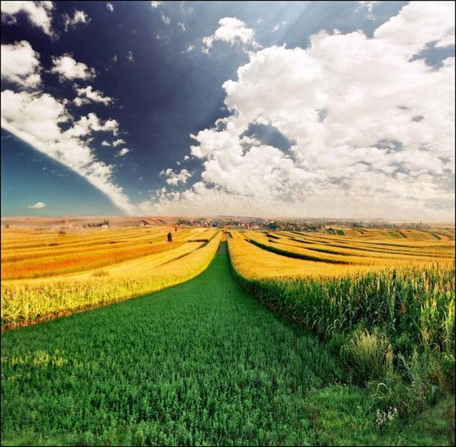 Cerul si pamantul: 28 de poze superbe