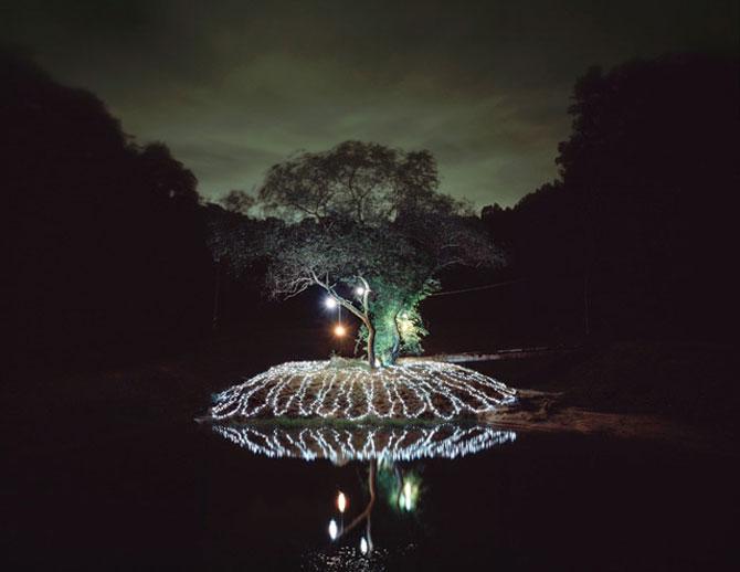 Lee Euneyol aprinde noaptea pe campuri, prin copaci - Poza 4