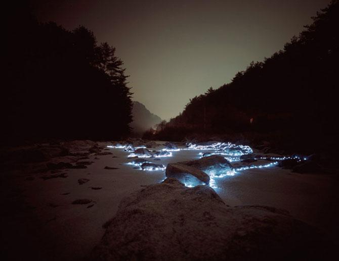 Lee Euneyol aprinde noaptea pe campuri, prin copaci - Poza 5