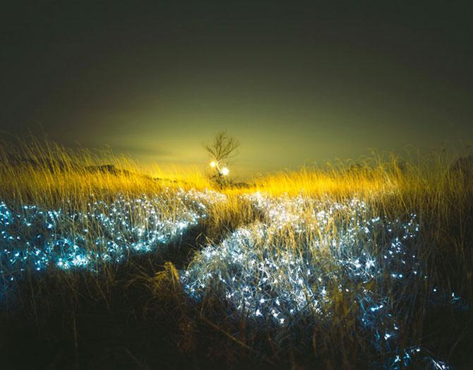 Lee Euneyol aprinde noaptea pe campuri, prin copaci - Poza 7