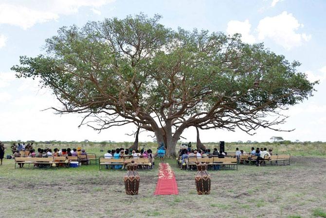 Nunta-safari, calare pe elefanti - Poza 4