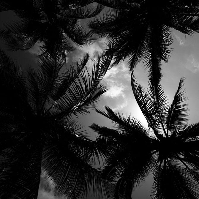 Ceruri sumbre si sublime, de Nydia Lilian - Poza 13