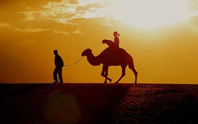 Ocolul lumii cu Oscar, cainele calator - Poza 5