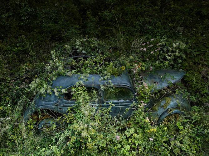 Parcarea Paradis de Peter Lippmann