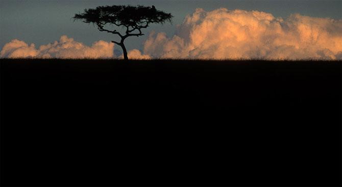 Asa poze nu vezi in fiecare zi: Paul Souders - Poza 16
