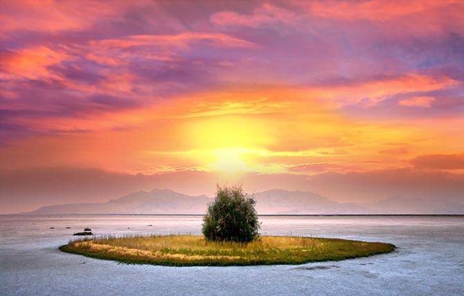 Ireal de frumoasa, natura - Cecil Whitt - Poza 1