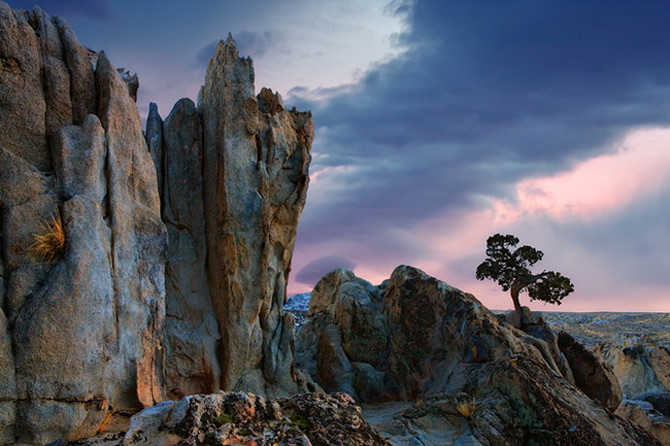 Ireal de frumoasa, natura - Cecil Whitt - Poza 2