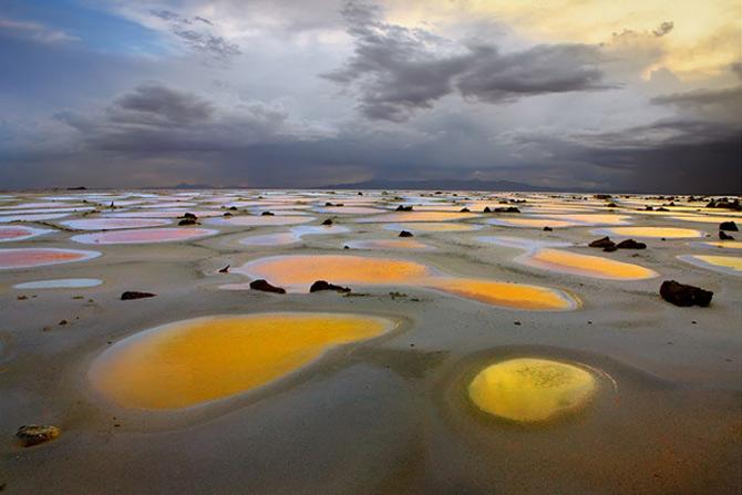 Ireal de frumoasa, natura - Cecil Whitt - Poza 3