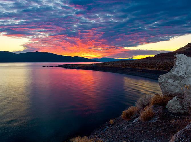 Ireal de frumoasa, natura - Cecil Whitt - Poza 10