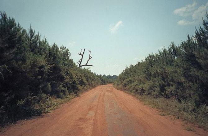 Melancolia peisajelor lui Cody Cob - Poza 4