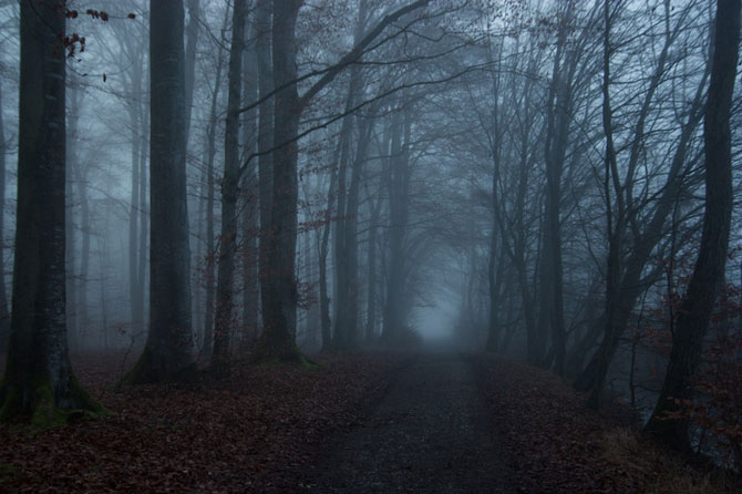 La pas prin Germania cu Hans Findling - Poza 6