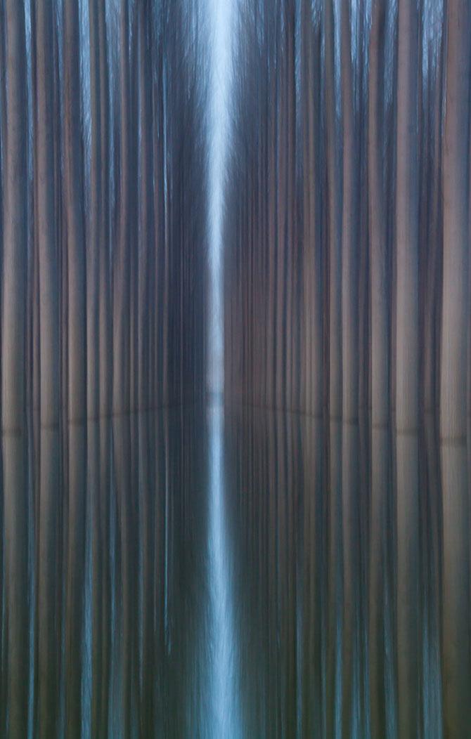 Peisaje cu paduri infinite, de Oliver Delgado - Poza 4