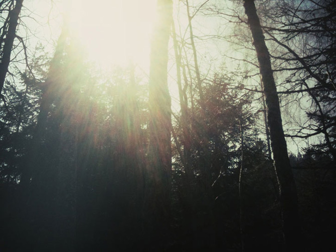 Peisaje din lumina si spatiu negativ marca Rene Felix - Poza 8