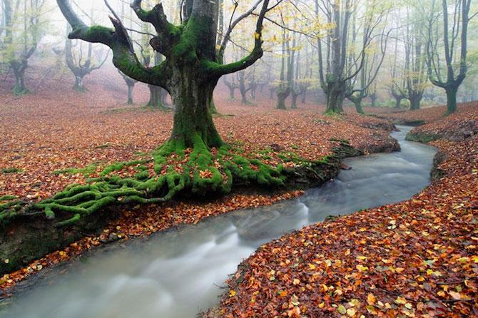 Magia peisajelor Spaniei, cu Jose Ramon Irusta - Poza 1