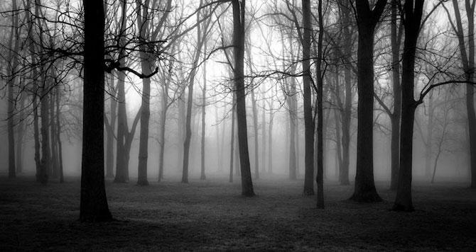 Peisaje alb-negru si melancolie, de Derek Toye - Poza 3