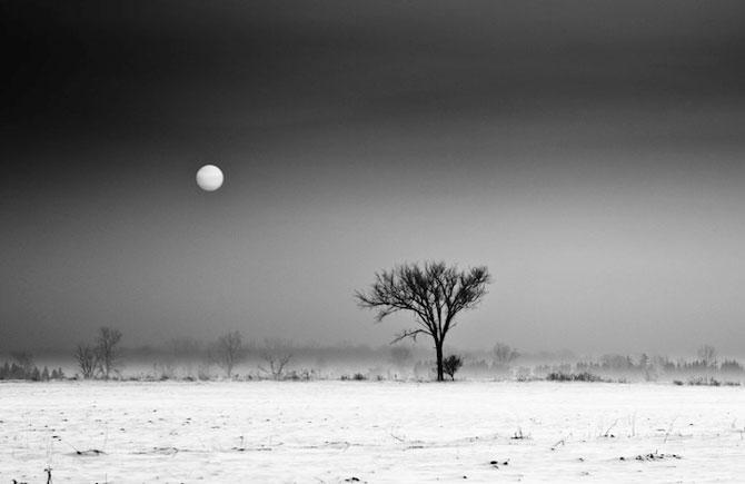Peisaje alb-negru si melancolie, de Derek Toye - Poza 4
