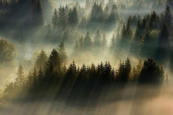 Prin ceata muntilor, cu Boguslaw Strempel - Poza 6