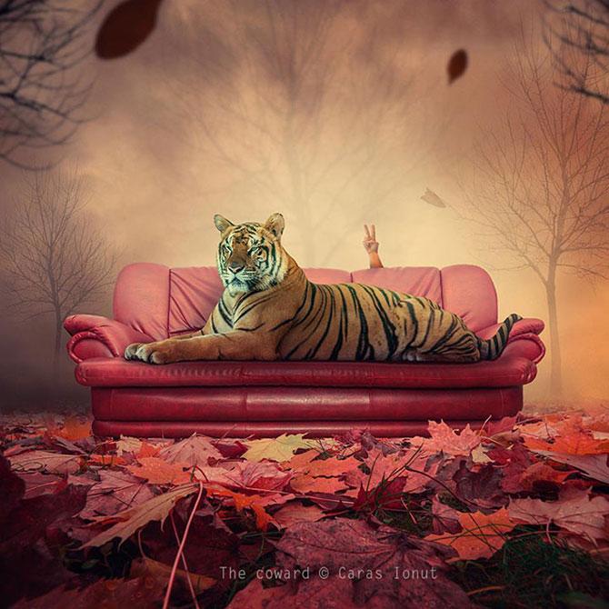 Romanul care creeaza peisaje de vis: Ionut Caras - Poza 8