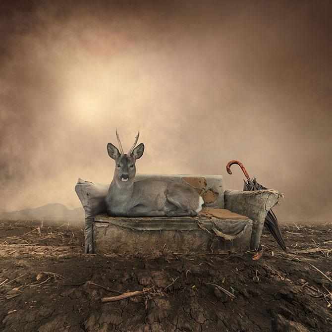 Romanul care creeaza peisaje de vis: Ionut Caras - Poza 9