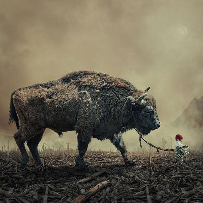 Romanul care creeaza peisaje de vis: Ionut Caras - Poza 10