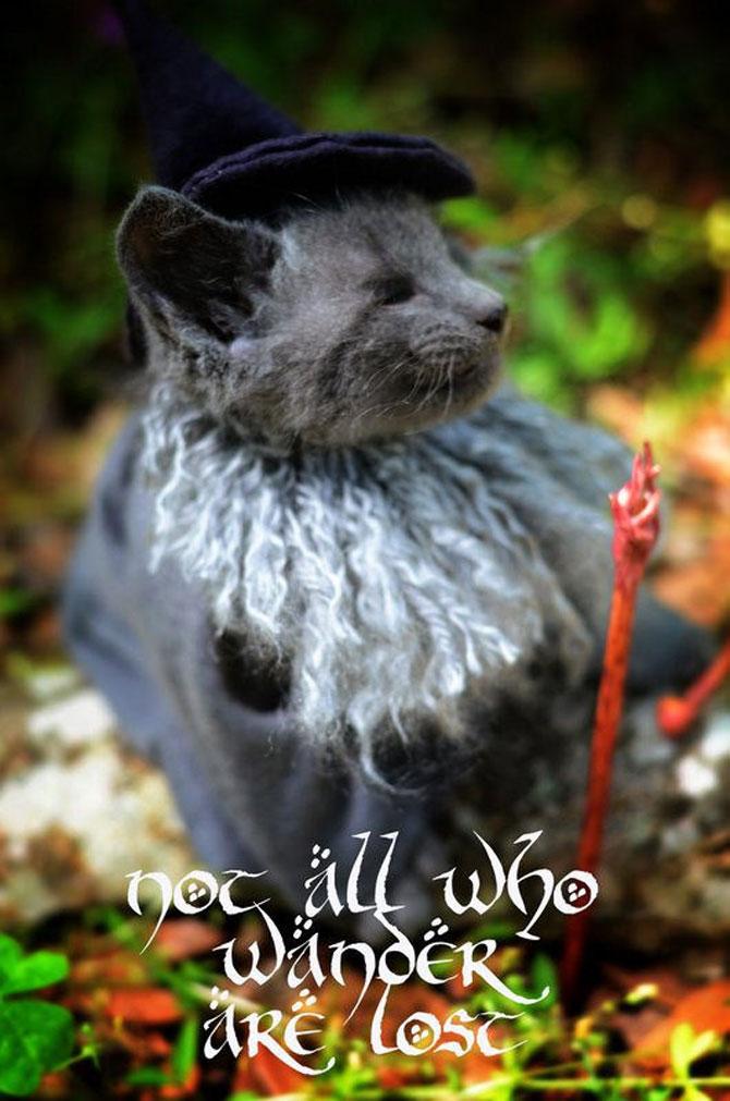 Pisici costumate in personaje celebre - Poza 2
