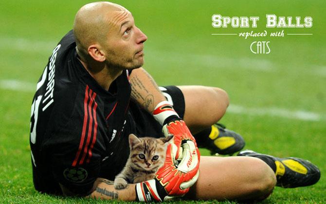 Sportul cu pisica in loc de minge - Poza 4