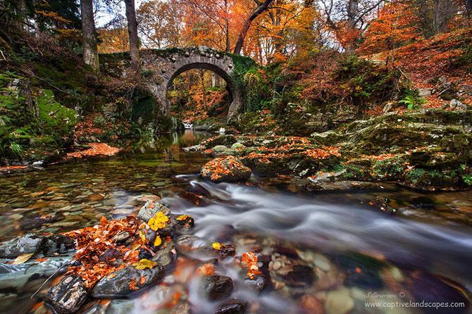 13 poduri uluitoare din intreaga lume - Poza 10