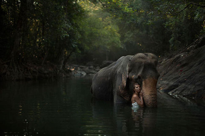 Portrete fantastice cu animale adevarate - Poza 4