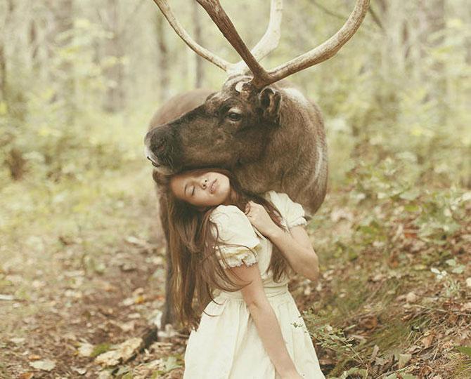 Portrete fantastice cu animale adevarate - Poza 5