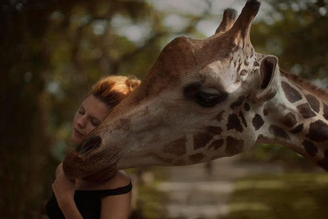 Portrete fantastice cu animale adevarate - Poza 10