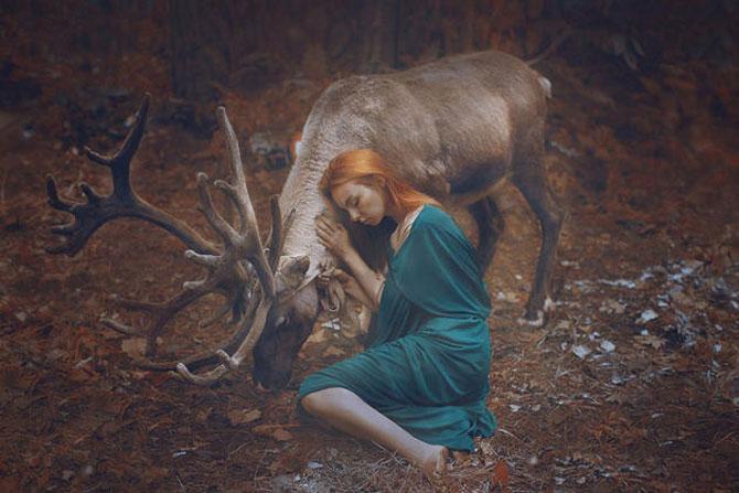 Portrete fantastice cu animale adevarate - Poza 14