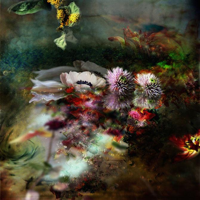 Portrete expresive de flori, de Isabelle Menin - Poza 4