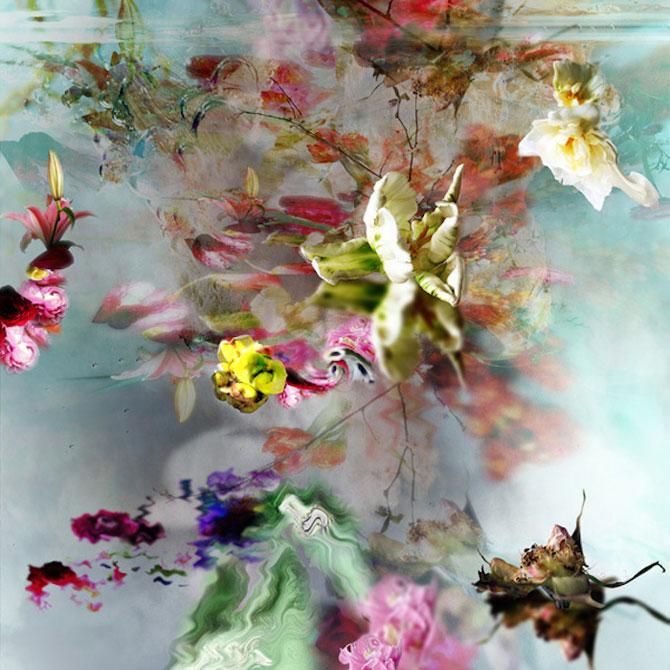 Portrete expresive de flori, de Isabelle Menin - Poza 6