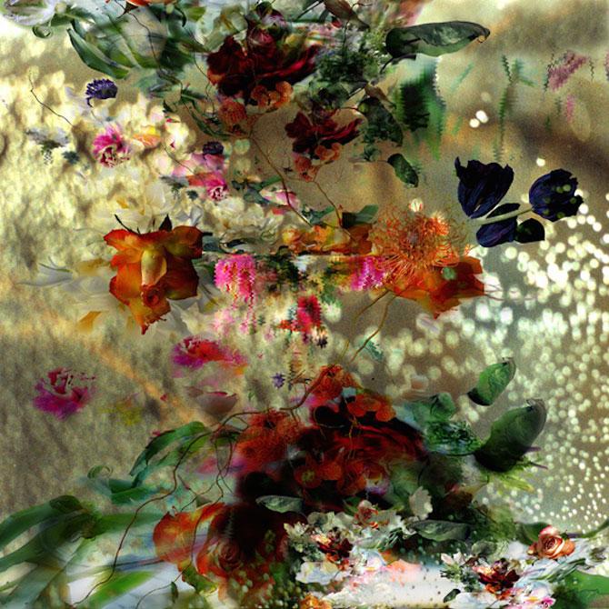 Portrete expresive de flori, de Isabelle Menin - Poza 10
