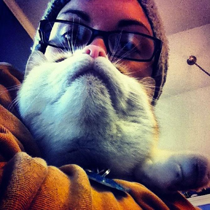 Pe jumatate om, pe jumatate pisica - Poza 1