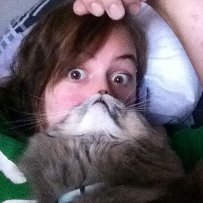 Pe jumatate om, pe jumatate pisica - Poza 5