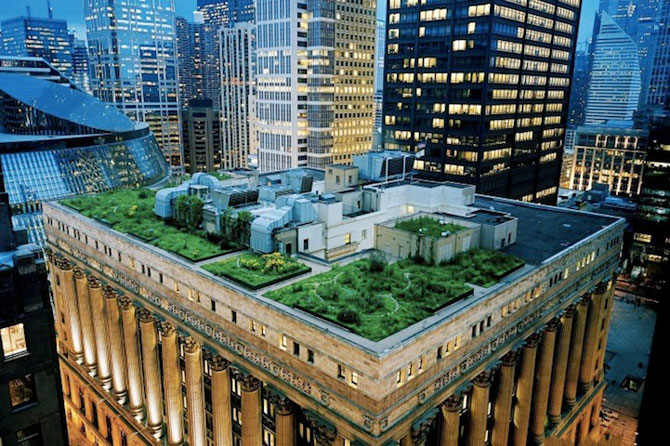 Gradina suspendata de pe Primaria din Chicago - Poza 1