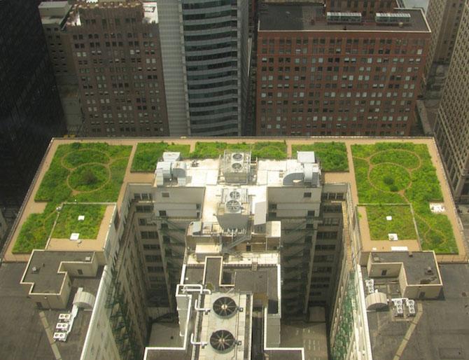 Gradina suspendata de pe Primaria din Chicago - Poza 6