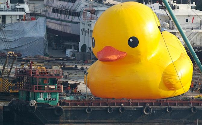 Ratusca gigantica navigheaza la Hong Kong! - Poza 3