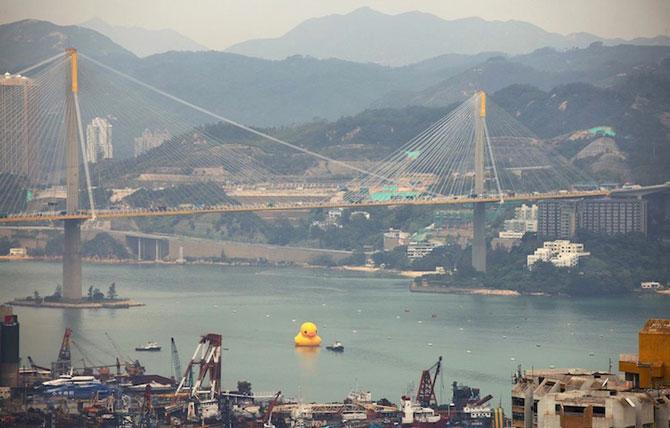 Ratusca gigantica navigheaza la Hong Kong! - Poza 5