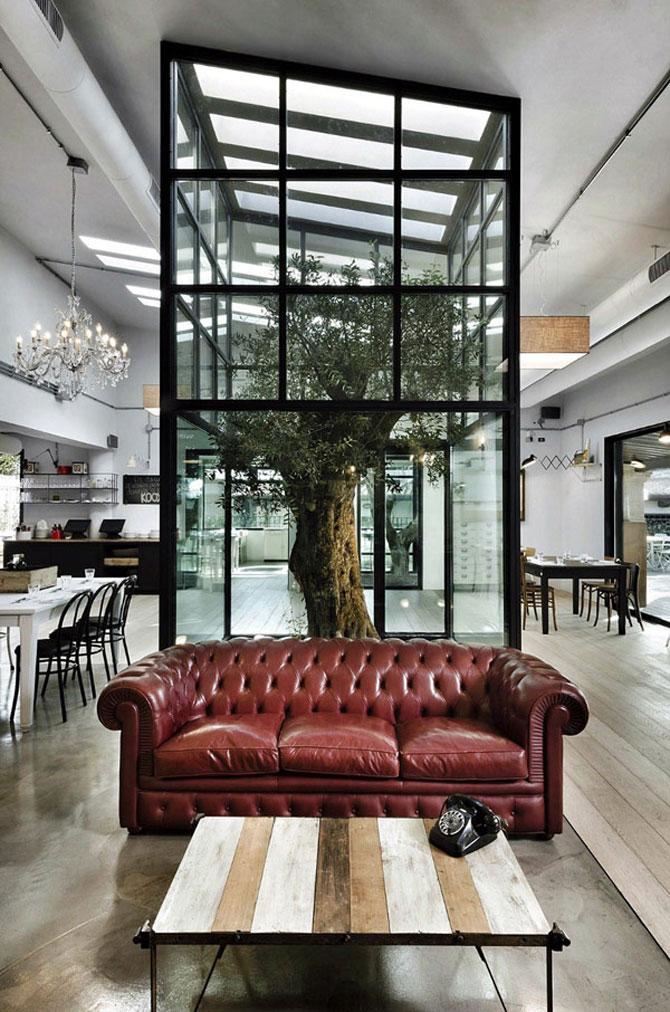 Restaurantul din Roma in care a crescut un copac - Poza 2