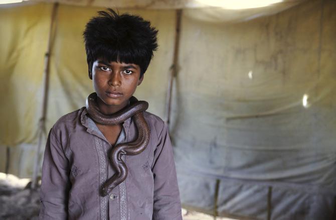 Viata neretusata cu Steve McCurry - Poza 34