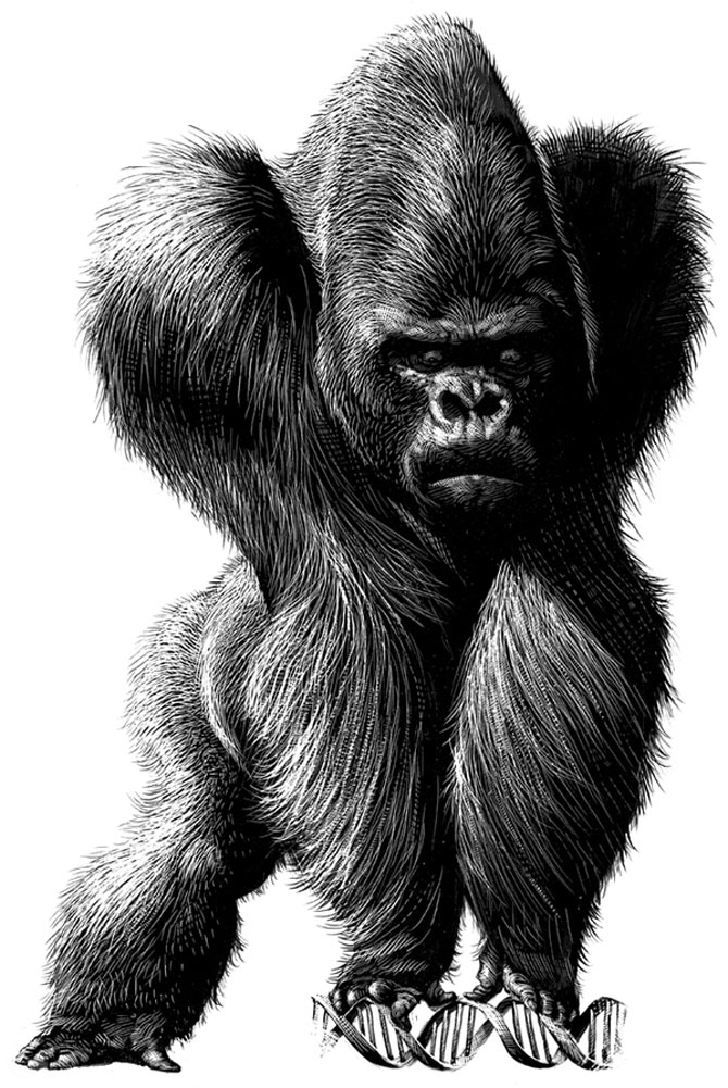 Portrete animalice, de Ricardo Martinez - Poza 1