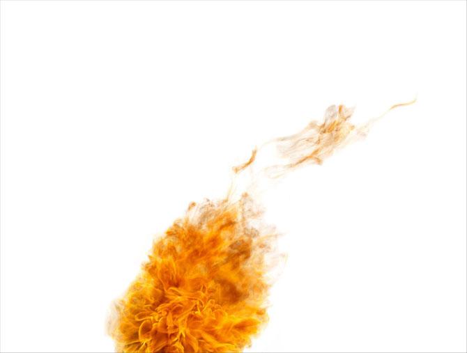 Fum si foc, de Rob Prideaux - Poza 5