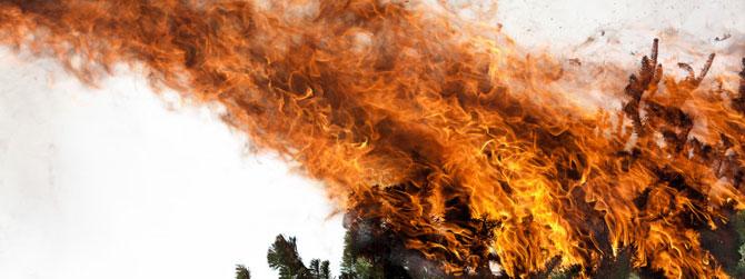 Fum si foc, de Rob Prideaux - Poza 7