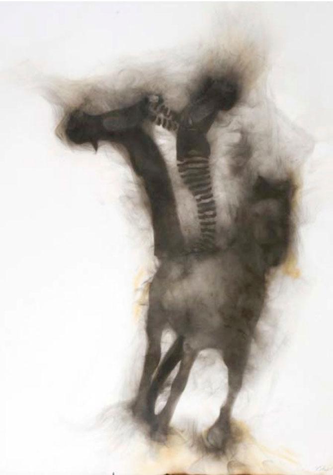Rob Tarbell Circ de fum