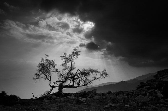 35+ poze extraordinare de Roberto Bertero - Poza 20
